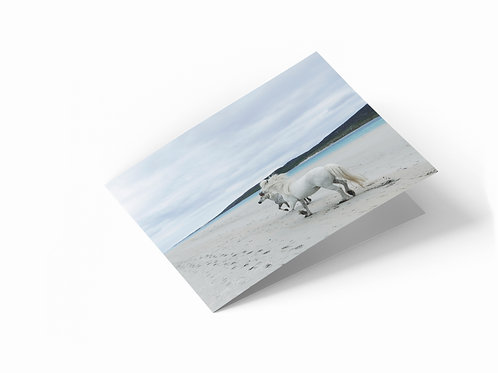 "Hebridean Horses, Isle of Harris 7"" x 5"" Landscape Greetings Card"