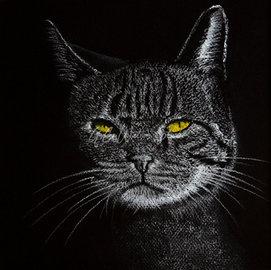 Distinguished Cat