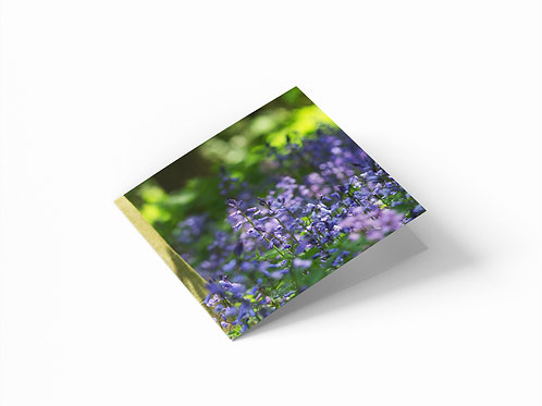 """Bluebell Wood 6""""x 6"""" Square Greetings Card"""