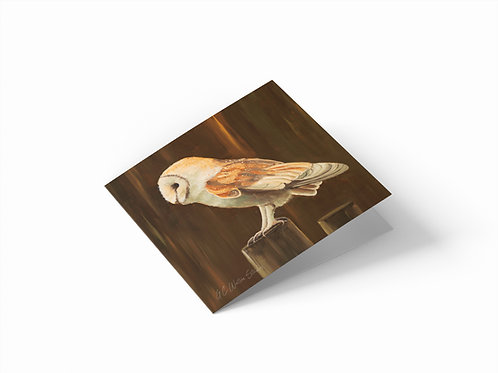 "Barn Owl 6"" x 6"" Square Greetings Card"