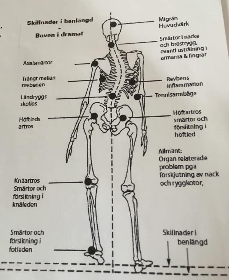 Complete Body Check  -  Dorn Metoden