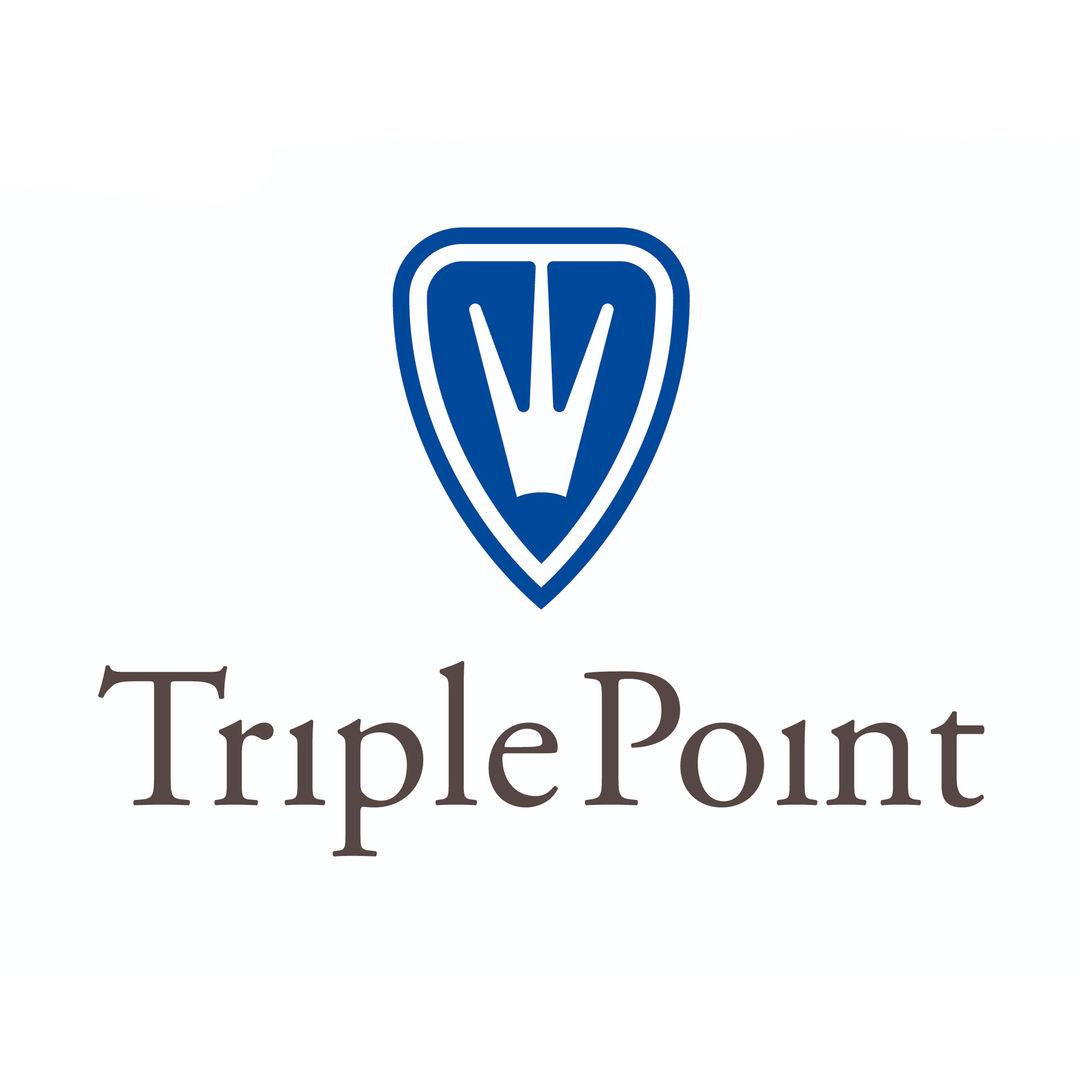 Triple point.jpg