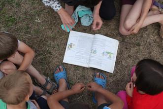 Южная дача: итоги, отзывы и фото