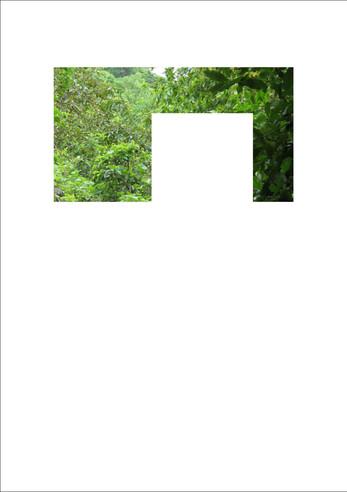 Elision 3.jpg