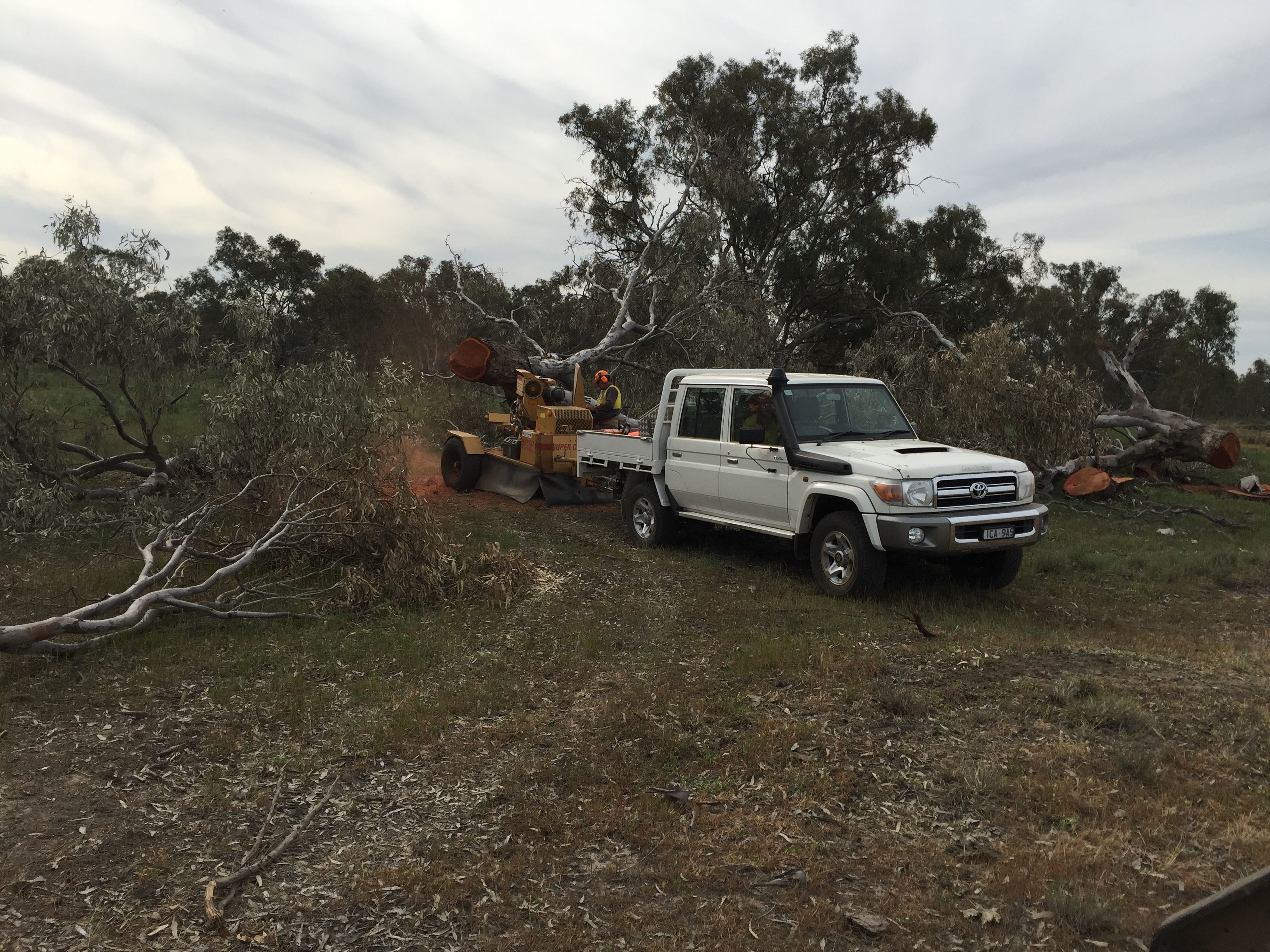 Stump Grinding Wodonga