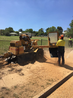Stump Grinding Albury