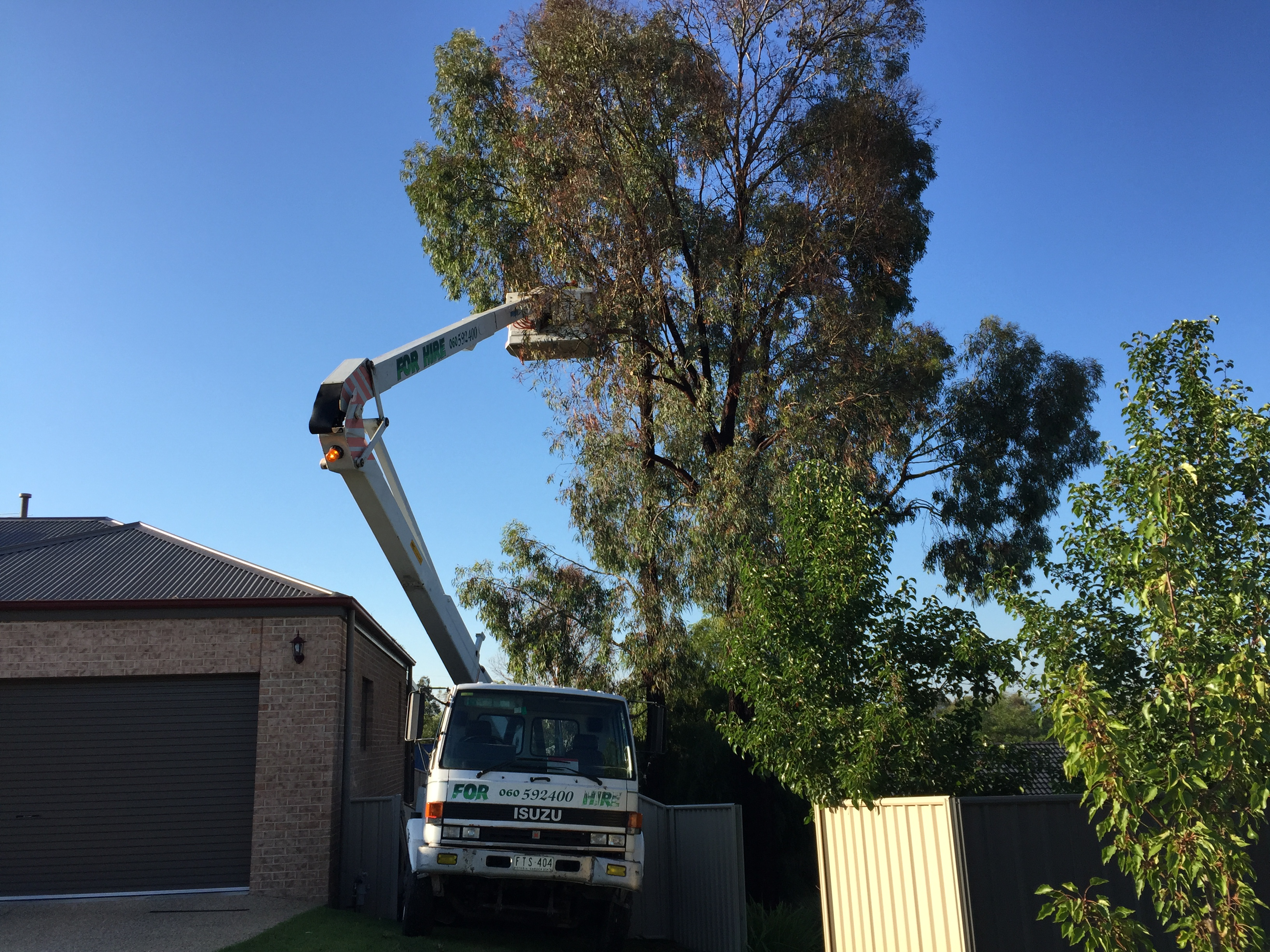 Hire Tower- Tree Trimming NE Vic