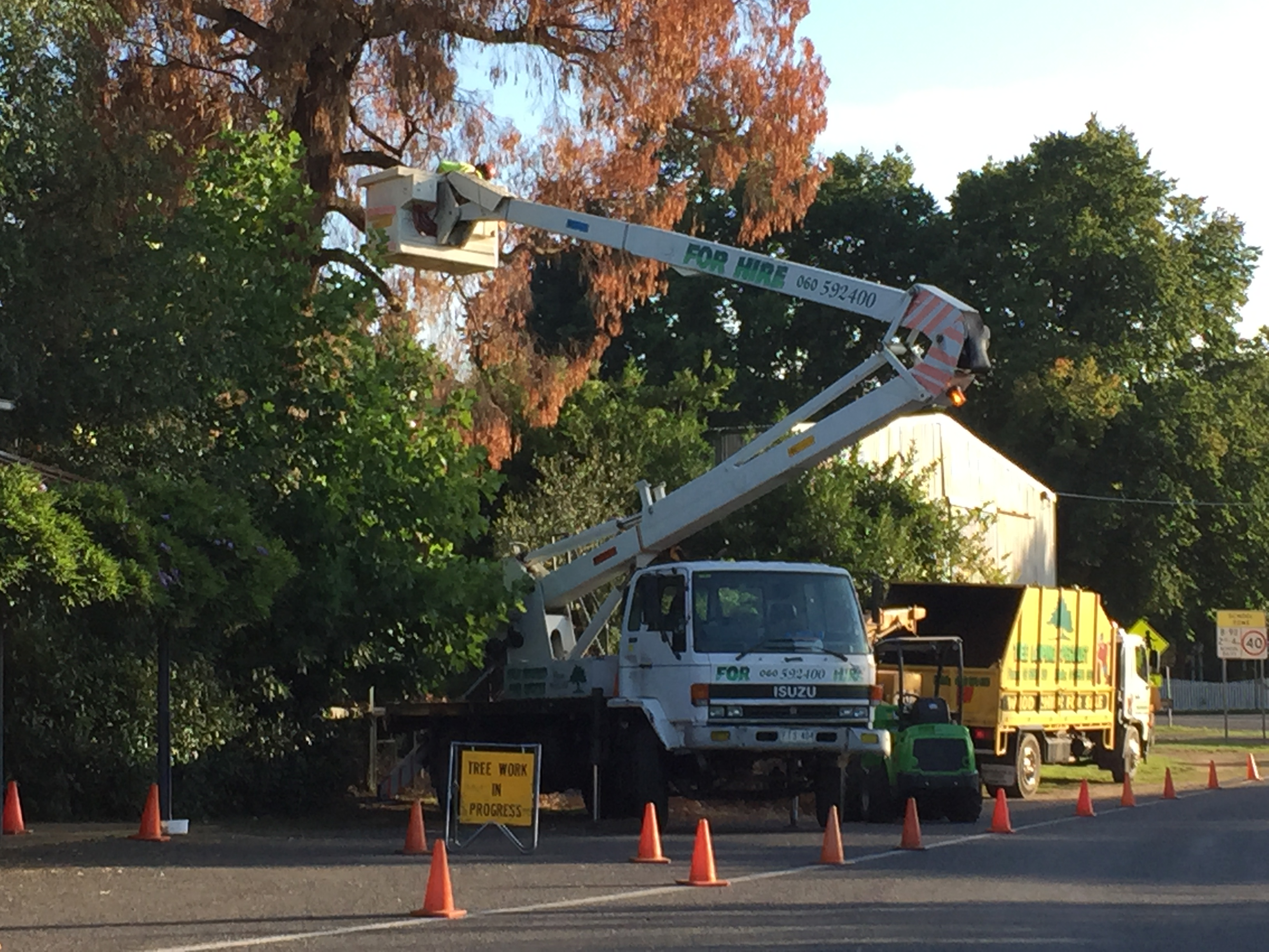 Cherry Picker North East Victoria