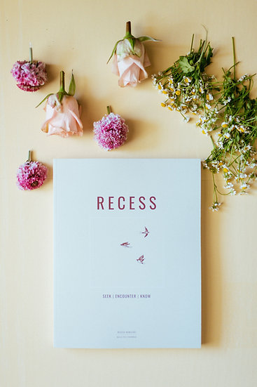 RECESS: Seek, Encounter, Know