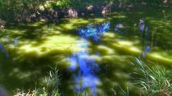 photographe christine gauvin morbihan palette de couleurs(3bis)