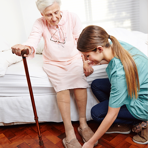 professional caretakers home health agen