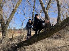 爬樹 Climbing trees