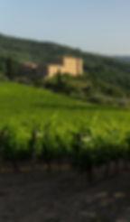 castle_crop.jpeg