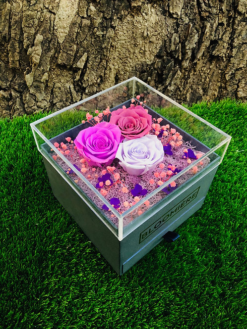 Trio Box