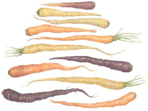 Eleven Carrots