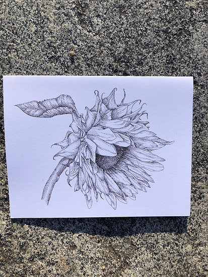 Sunflower in Pen Notecard