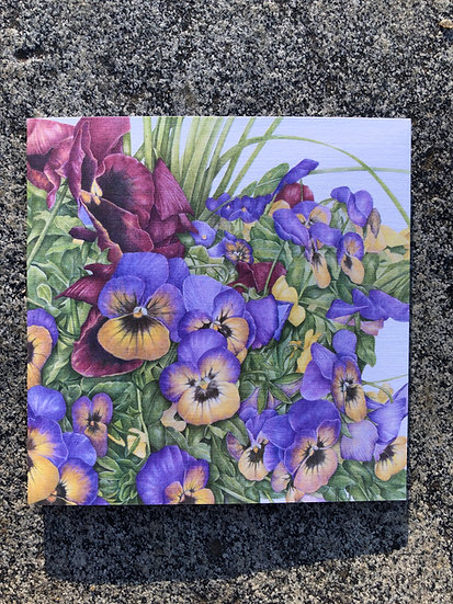 Potted Pansies Notecard