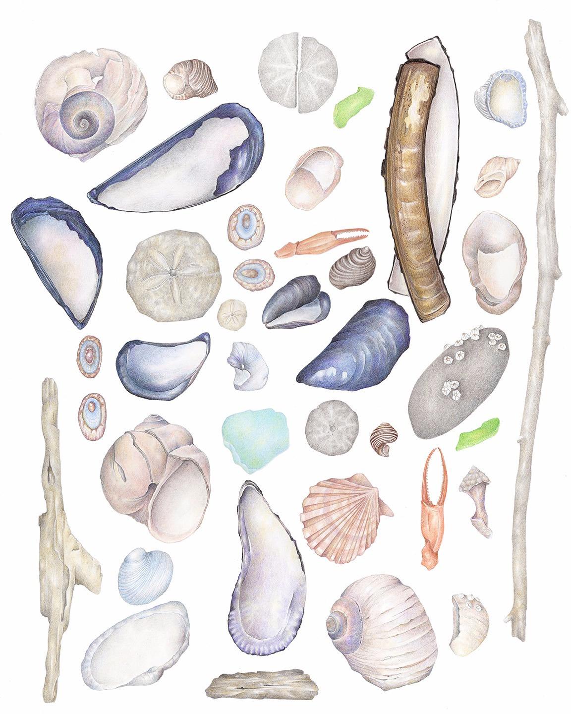 Atlantic Finds
