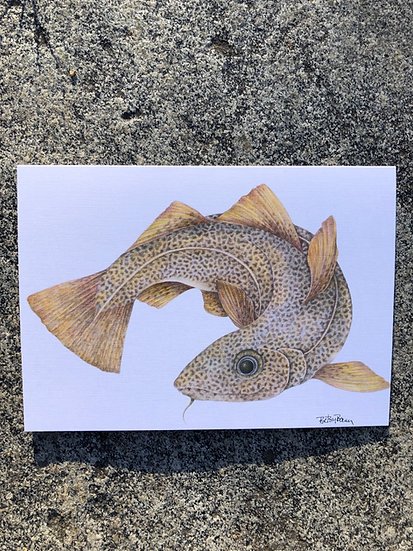 Codfish Notecard