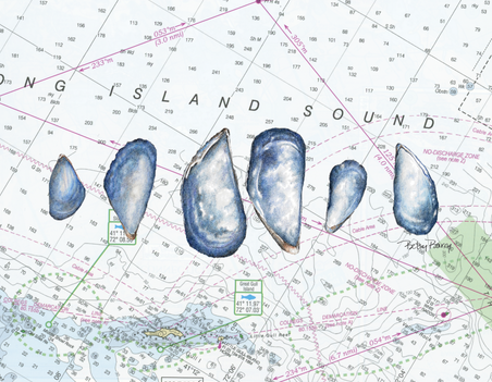 Mussels & Chart