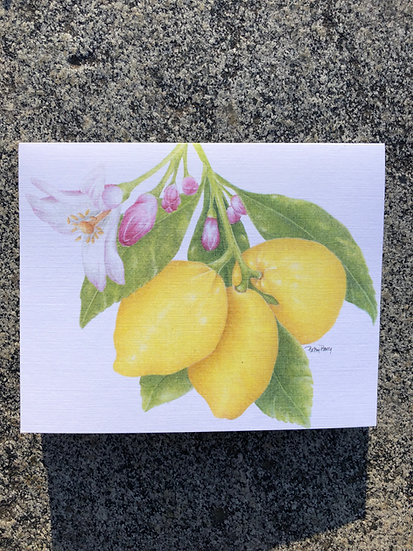 Lemon Branch Notecard