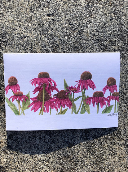 Coneflowers note card