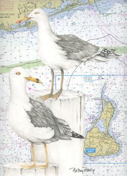 Gulls & Chart
