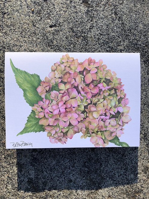 Pink Hydrangea notecard