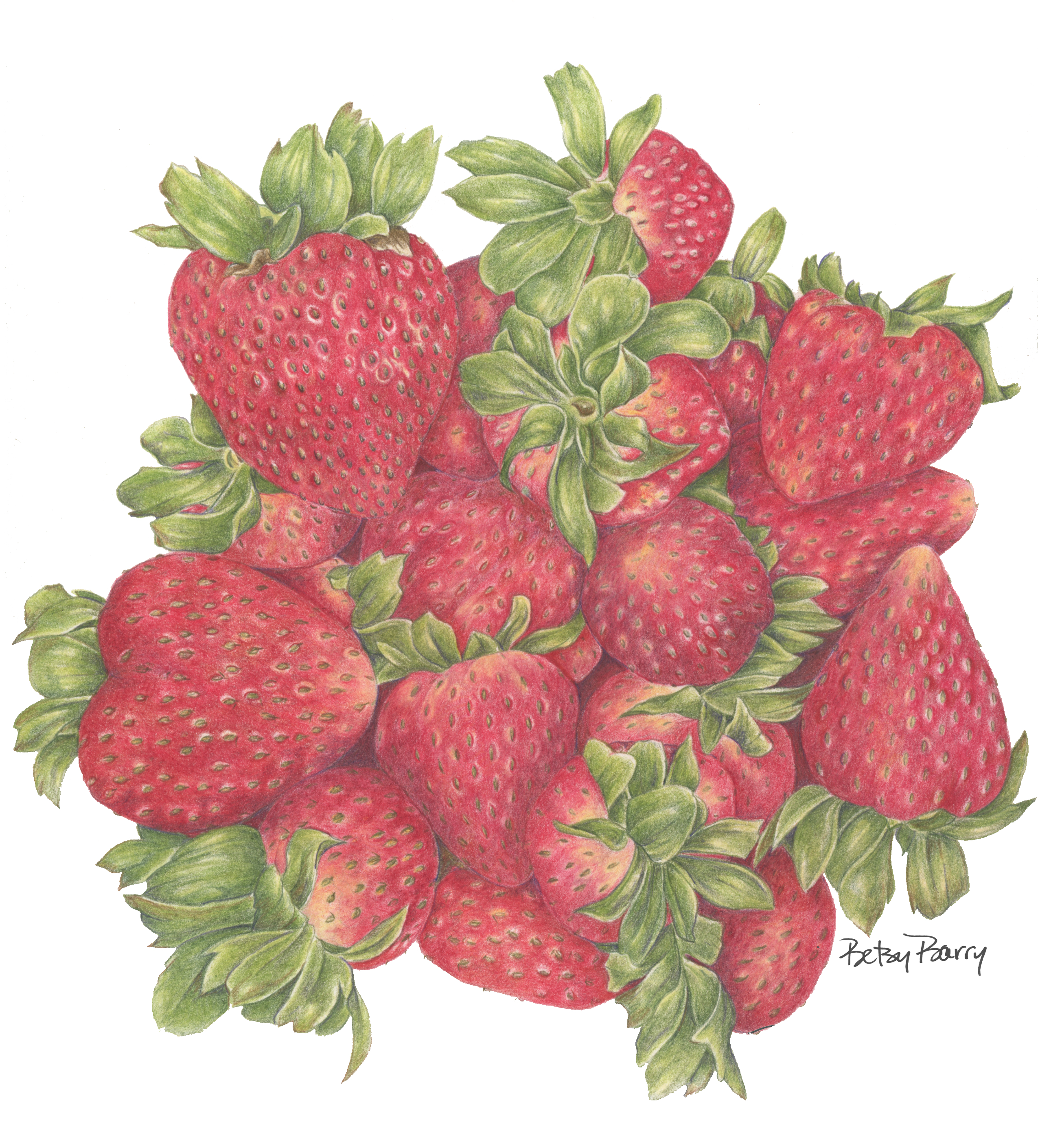 SOLD Strawberries