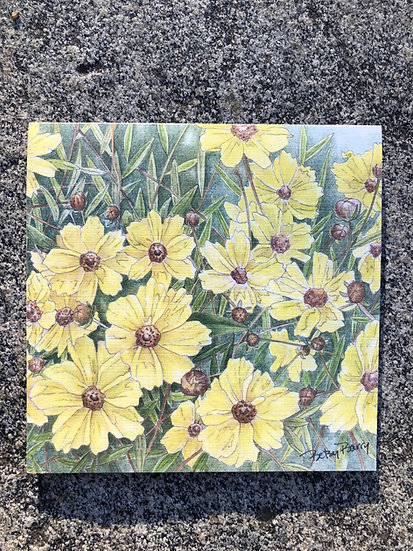 Coreopsis Notecards