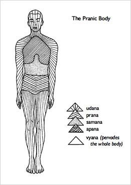 therapeutic yoga, yoga therapy