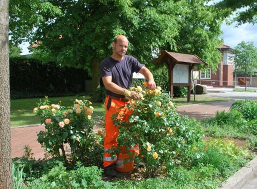 Beete in Visbek und Rechterfeld erstrahlen in voller Blütenpracht
