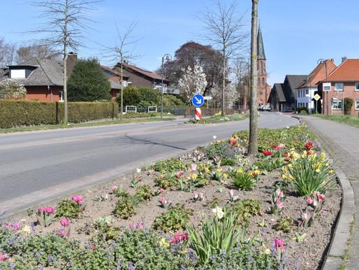 Blumen Ostmann spendet farbenfrohe Pracht