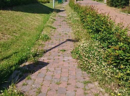 Grundstücksbesitzer müssen Wege reinigen