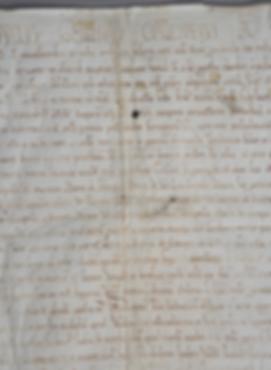 GRANDE CHARTE CHAMPENOISE 1114 parchemin champagne manuscrit