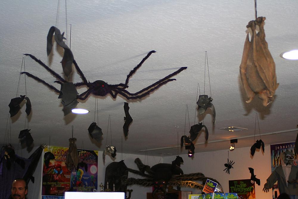 spider ceiling