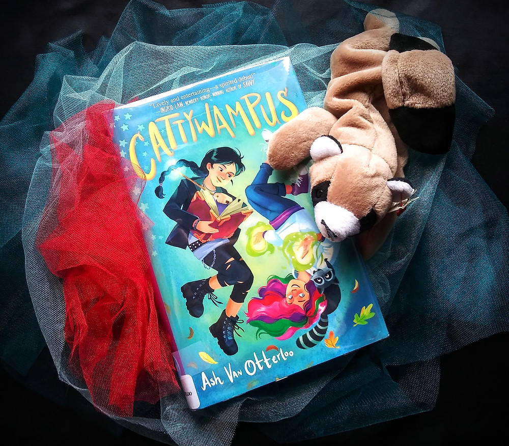 teal and red tulle with book Cattywampus and raccoon beanie baby