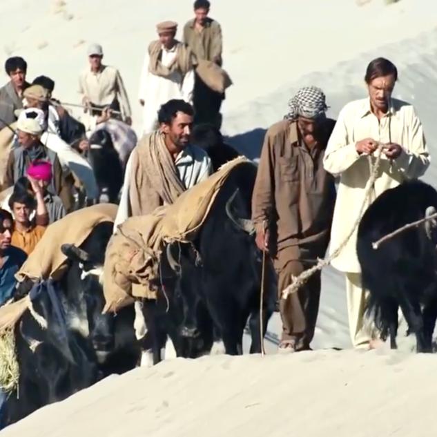UN/GLOBAL GOALS FILM
