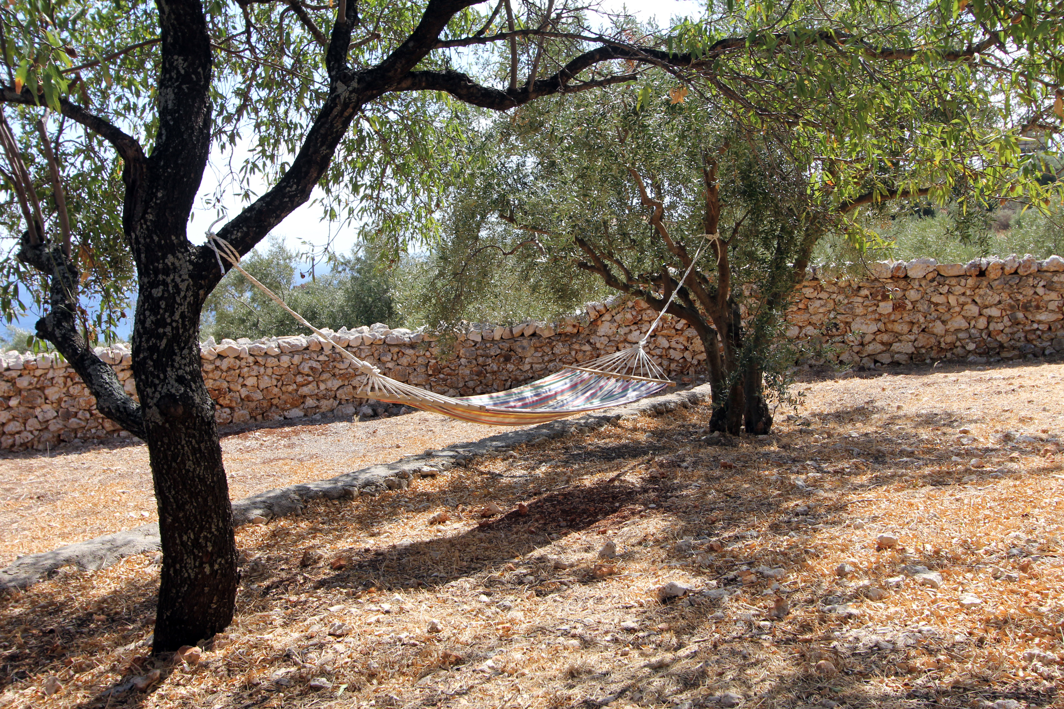 Hammock Relaxation Area