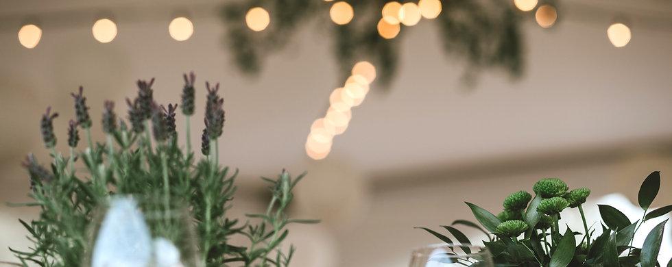 petrapakophotography_alinabelush_wedding