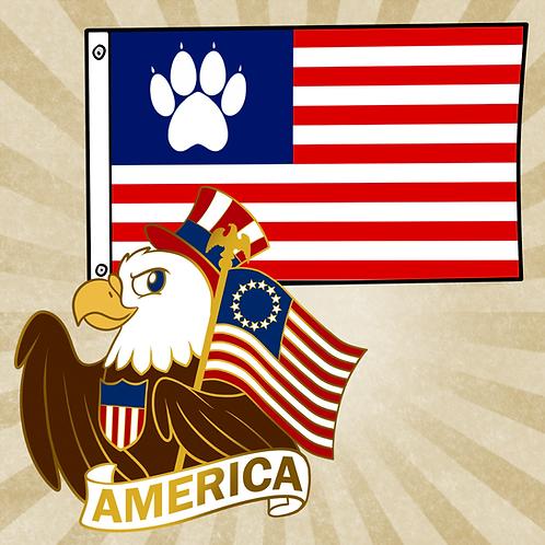 American Flag & Pin Combo