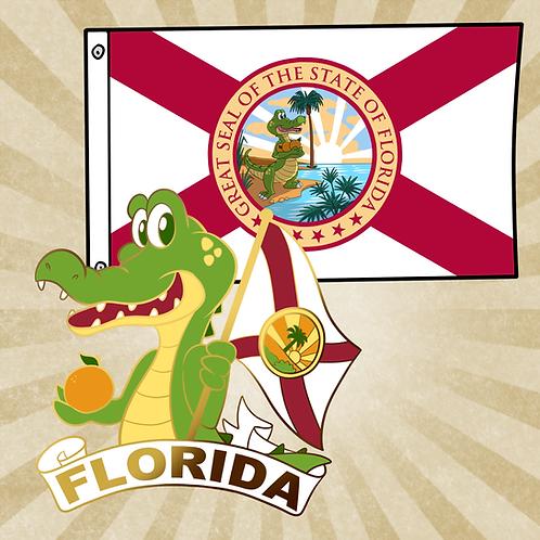 Florida Flag & Pin Combo