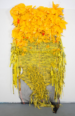 Borinquen_Gallo_Field_Guide_to_Narcissism_Debris_netting,_yellow_plastic_bags,_c