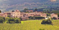 domaine-pommiers-vins-beaujolais