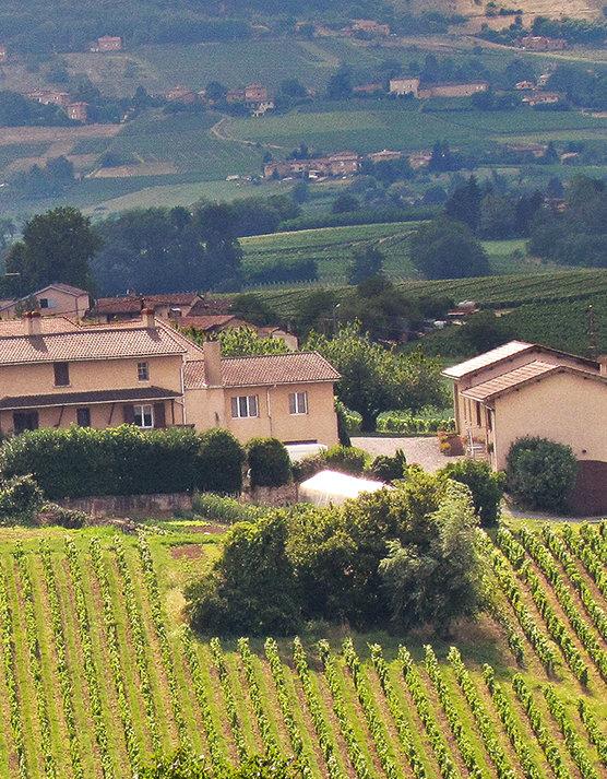 Caveau Domaine Saint-Pré