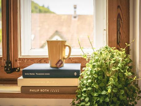 Koupě bytu: bydlení a investice (část 3.)