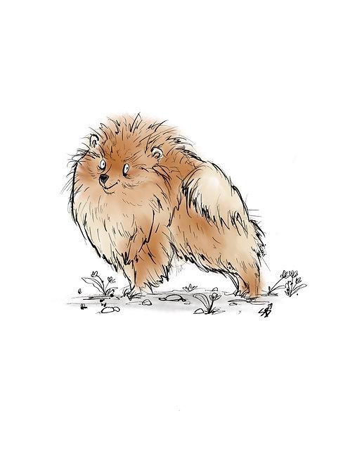Customised A4 Pomeranian pet portrait