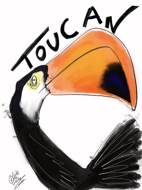 Toucan A4 art print