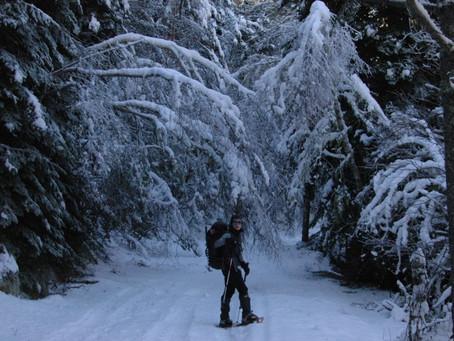 La màgia del Pallars Sobirà amb raquetes de neu sota la lluna plena