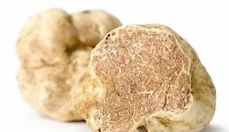 white truffle.webp